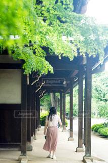 寺参りする女性の写真・画像素材[1804903]