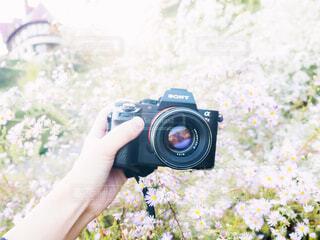カメラを持っている手の写真・画像素材[1804908]