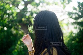 花を持つ女性の写真・画像素材[1820206]