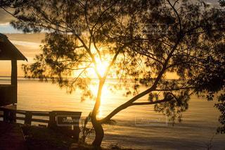 ニューカレドニアの夕焼けの写真・画像素材[1842970]