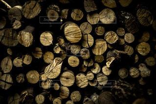 薪の写真・画像素材[1859625]