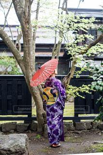 番傘をさす和服の女性の写真・画像素材[2131789]