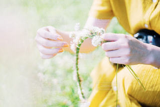 花冠の写真・画像素材[2375083]