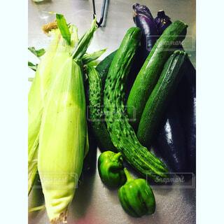 家庭菜園での収獲の写真・画像素材[1511491]