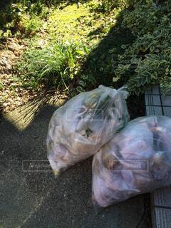 ゴミ。ゴミと言ったら、ゴミ。裏庭に置いたただのゴミ。の写真・画像素材[1515765]