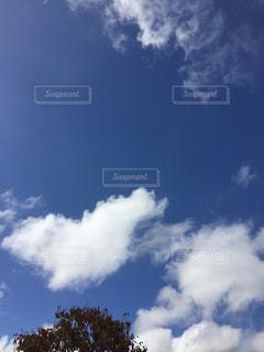 きれいな青空に白い雲。の写真・画像素材[1516060]