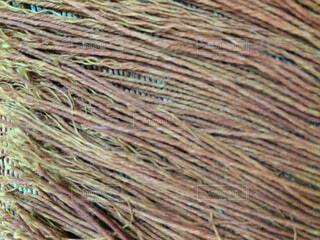 テーブルクロスのフリンジ。の写真・画像素材[1525933]