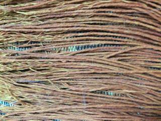 テーブルクロスのフリンジ。の写真・画像素材[1525934]