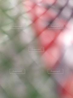 賑やかな会場の照明のイメージ。の写真・画像素材[1546902]