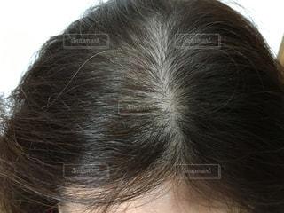 薄毛の写真・画像素材[1677325]