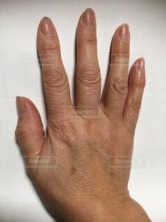 彼の手のオブジェクトを持っている手の写真・画像素材[1763687]