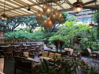 フィリピンのカフェの写真・画像素材[1513217]