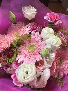 ピンクの花の花束の写真・画像素材[1515352]