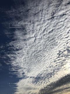 秋晴れの写真・画像素材[1604262]