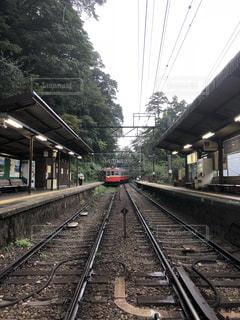 箱根登山鉄道の写真・画像素材[1517209]