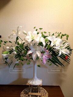花の写真・画像素材[62183]