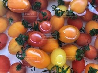 カラフルなミニトマトの写真・画像素材[1830914]