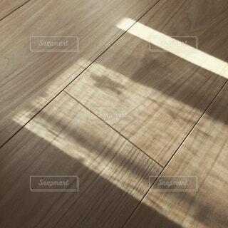 柔らかな陽射しの写真・画像素材[1530565]