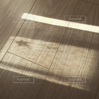 柔らかな陽射しの写真・画像素材[1530566]