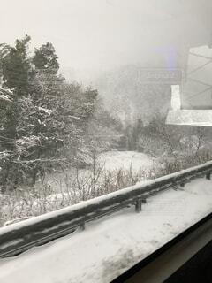 バス車窓雪の写真・画像素材[1518687]