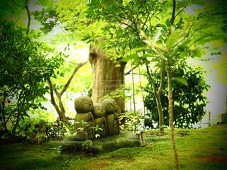 お地蔵さんの森の写真・画像素材[1521005]