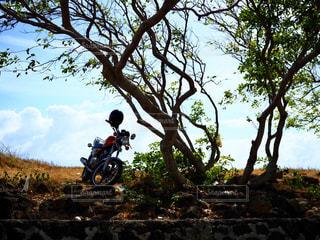 オートバイの写真・画像素材[2931214]