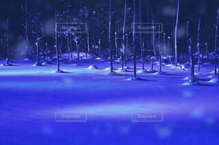 青い池の写真・画像素材[1805418]