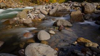 岩と川と紅葉の写真・画像素材[1525177]