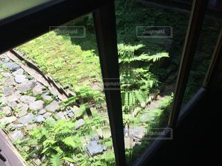 窓からの眺めの写真・画像素材[1525449]