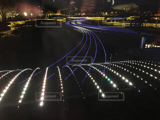 夜ライトアップ橋の写真・画像素材[1526482]