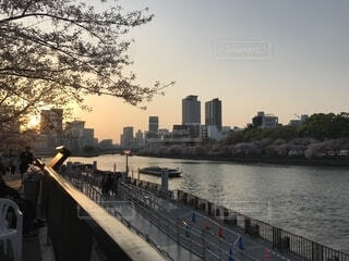 大川の写真・画像素材[1608138]