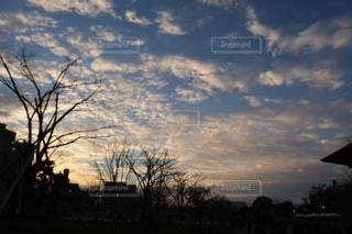 空の雲の写真・画像素材[1710185]