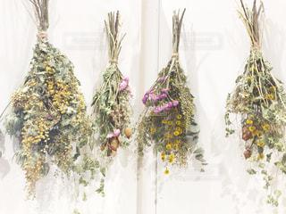 それの花と花瓶の写真・画像素材[1839577]