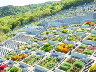 庭園に色とりどりの花のグループの写真・画像素材[2082364]