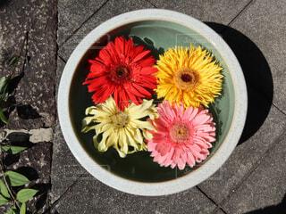 花のクローズアップの写真・画像素材[2100273]