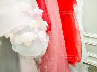 赤と白のドレスの写真・画像素材[3027088]