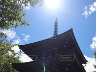 岡寺の写真・画像素材[3549382]