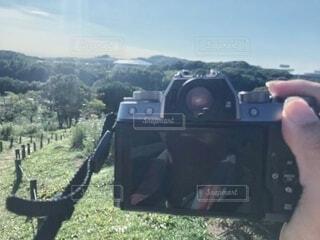 一眼レフカメラで青空でのコスモス撮影の写真・画像素材[3774660]