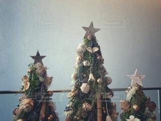クリスマスツリーが三つの写真・画像素材[3866395]