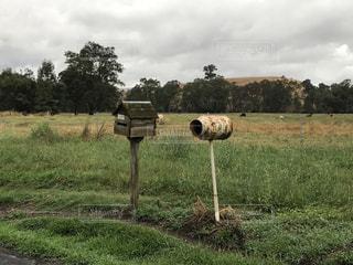 ミルクタンクの郵便受けです。オーストラリアの田舎では、これが普通です。の写真・画像素材[1534738]