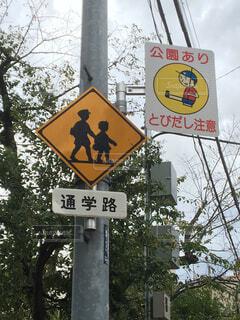通学路の写真・画像素材[1528431]