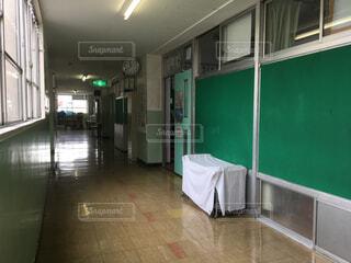 小学校の廊下の写真・画像素材[1528433]