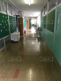 小学校の廊下の写真・画像素材[1528435]