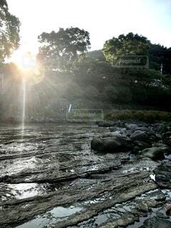 夏休みの水遊びの写真・画像素材[1528345]