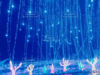 光る海底の写真・画像素材[2757553]