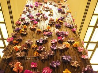 花の壁の写真・画像素材[1611108]