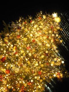 クリスマスツリーの写真・画像素材[1711889]
