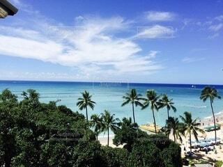 ハワイの海の写真・画像素材[4025286]