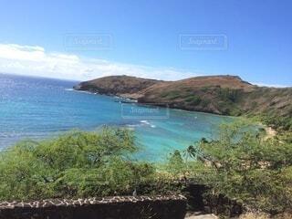 ハワイの自然の写真・画像素材[4032323]