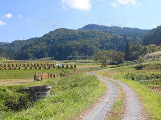 田舎の風景の写真・画像素材[1534579]